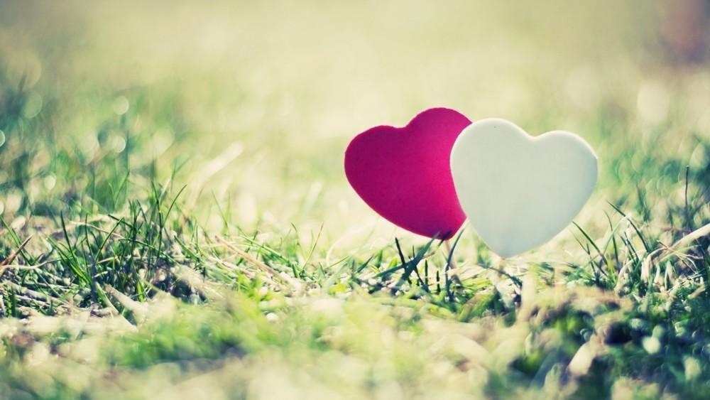 Best Love Background