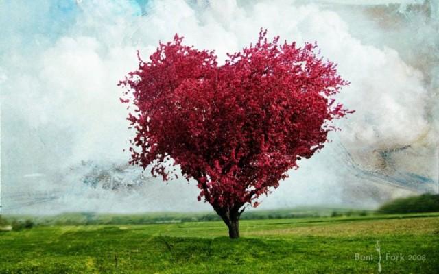 Love Tree Wallpaper