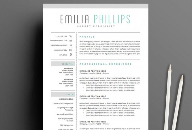4 Page Resume Template PSD