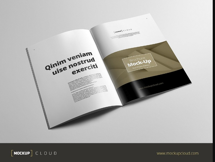 Easy Editable Booklet Mockup