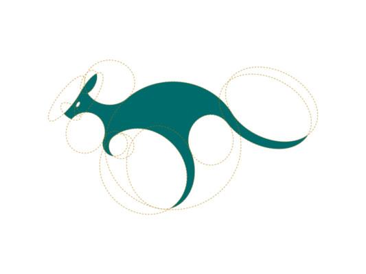 Kangaroo Branding Identity