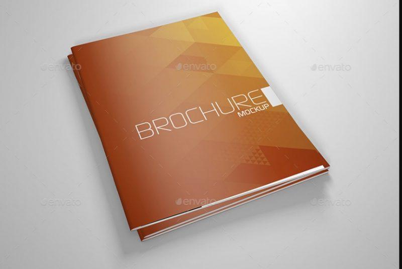 Professional Booklet Mockup PSD