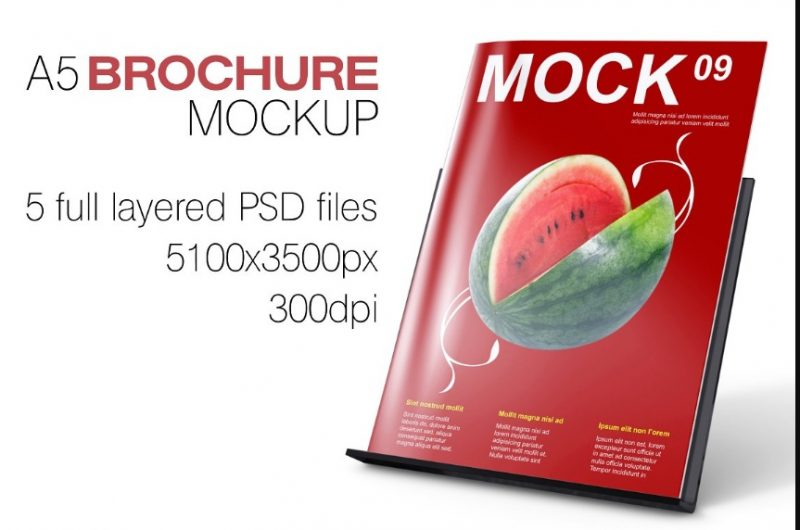 Realistic Booklet Mockup PSD
