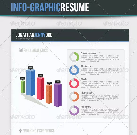 3 Page Infographic Resume Template