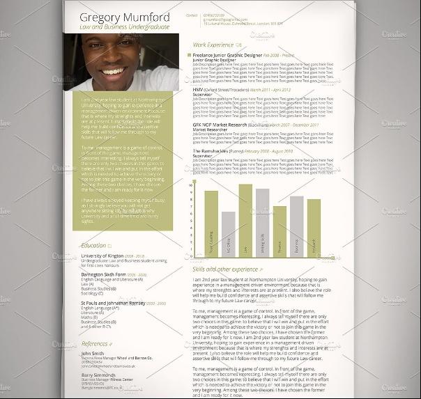 A4 Executive Resume Template