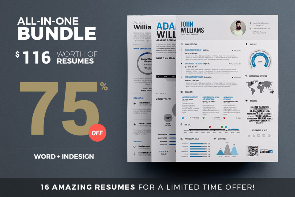 All in One Resume Template Bundle