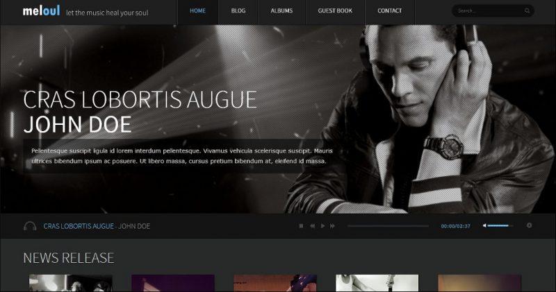 Audio Store WordPress Theme