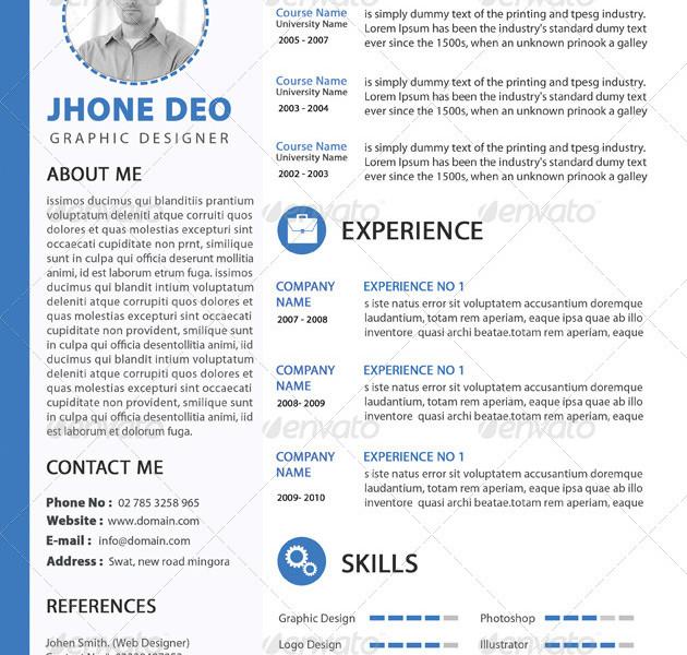 Clean web Developer Resume Template