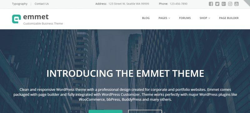Customizable Business WordPress Theme