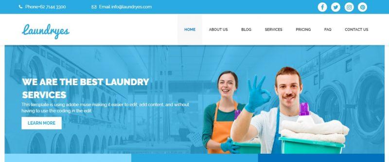 Laundry Business WordPress Theme