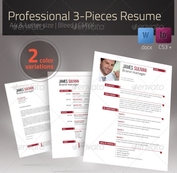 Letter Size Executive Resume Template