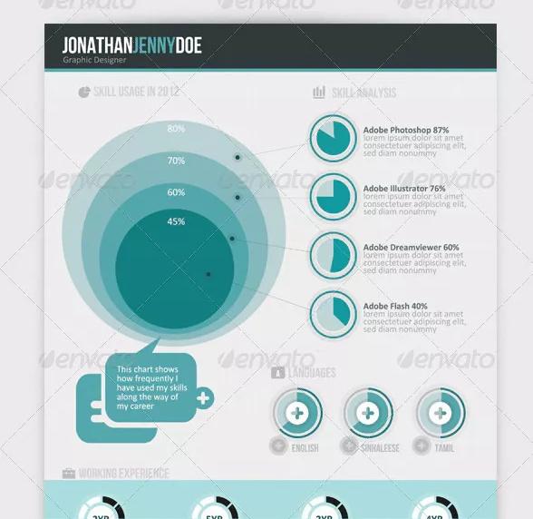 Modern CV Infographic Template
