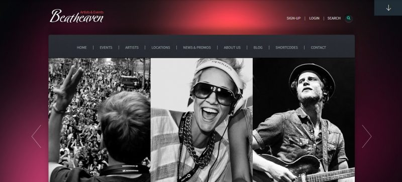 Music Artist WordPress Theme