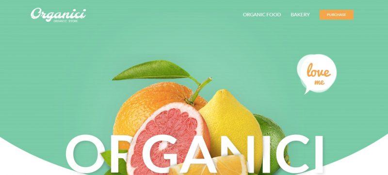 Organic Store SEO WordPress Theme