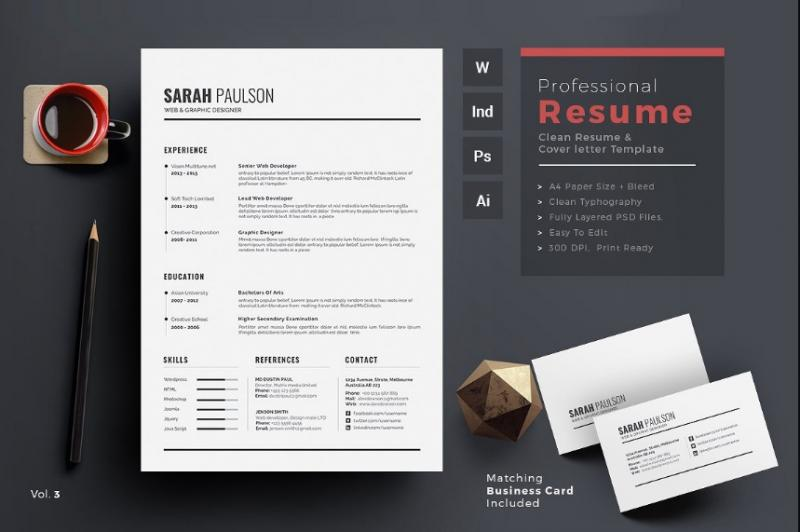 Print Ready IT Resume Template