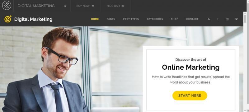 Professional Marketing WordPress Theme
