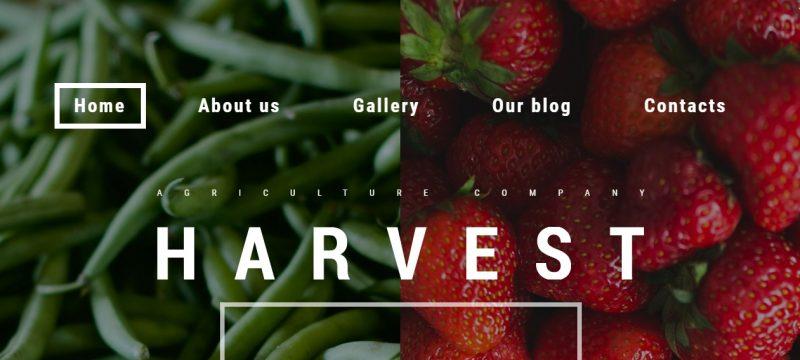 SEO Agricultural WordPress Theme