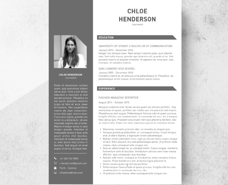 Two Page Developer Resume Template