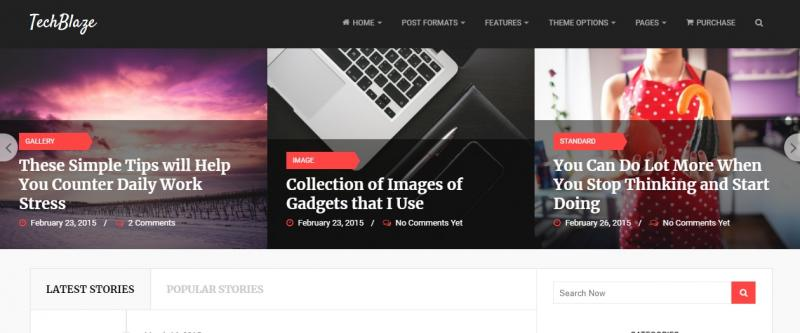 WordPres Blog Theme