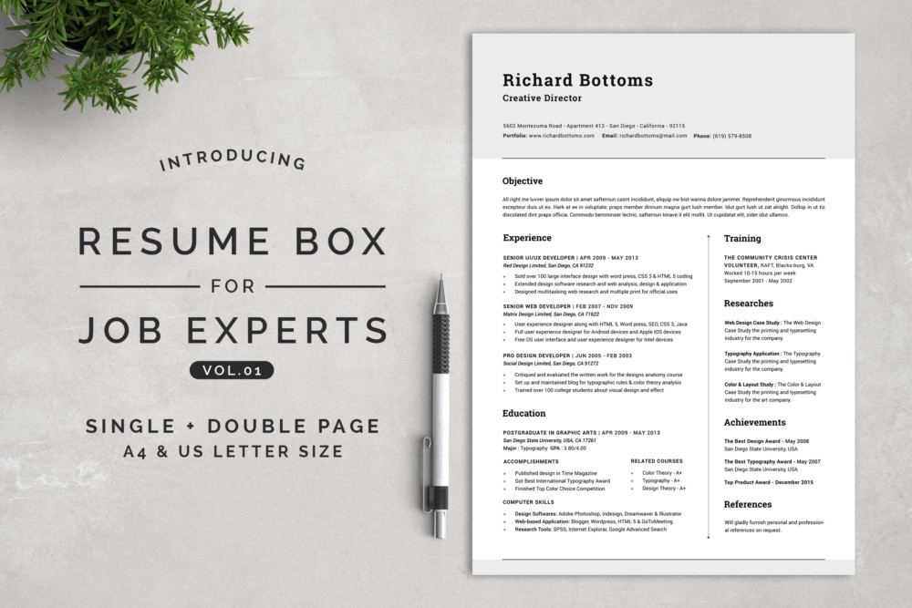 2 Pages Chronological Resume Template