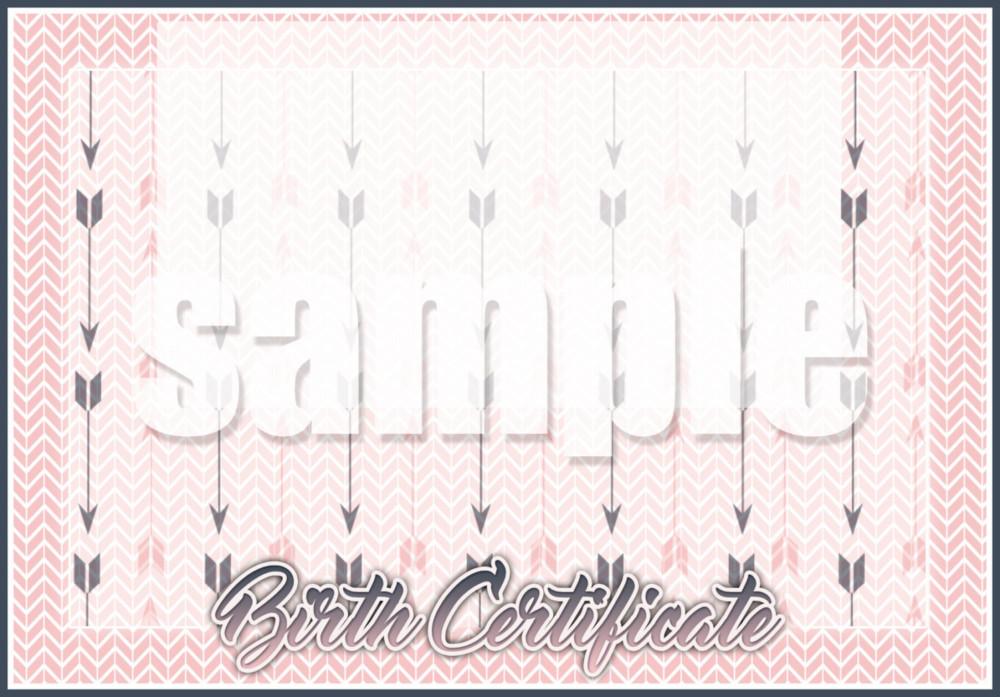 free-birth-certificate-translation-birth-certificate-sample-birth-certificate-translation-template