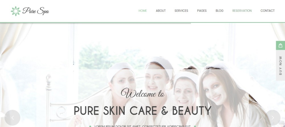 Beautiful WordPress Spa and Salon Theme