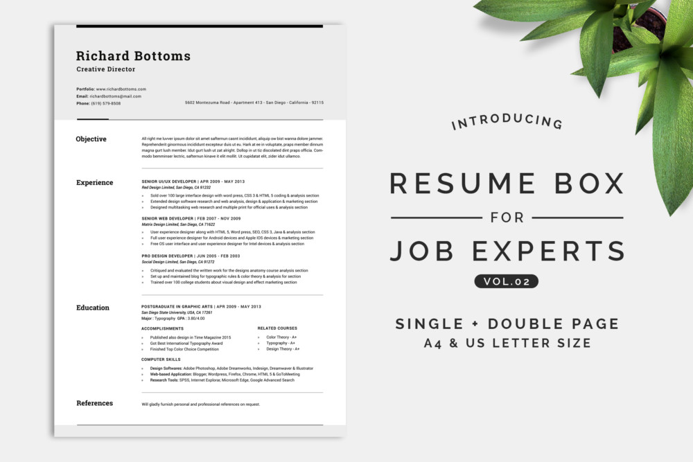 Chronological Resume Template Word Psd And Eps Format