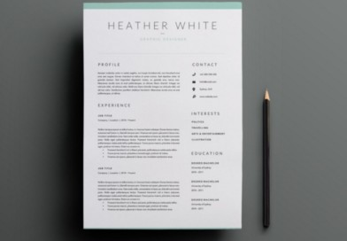 20+ Business Resume Template Word, PSD, EPS and AI Format