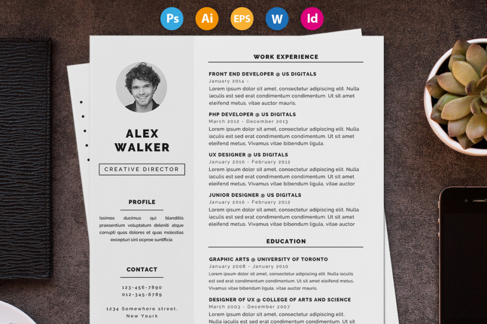 clean business resume template word format - Business Resume Template Word