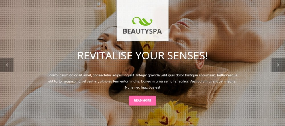 Clean WordPress Spa Theme