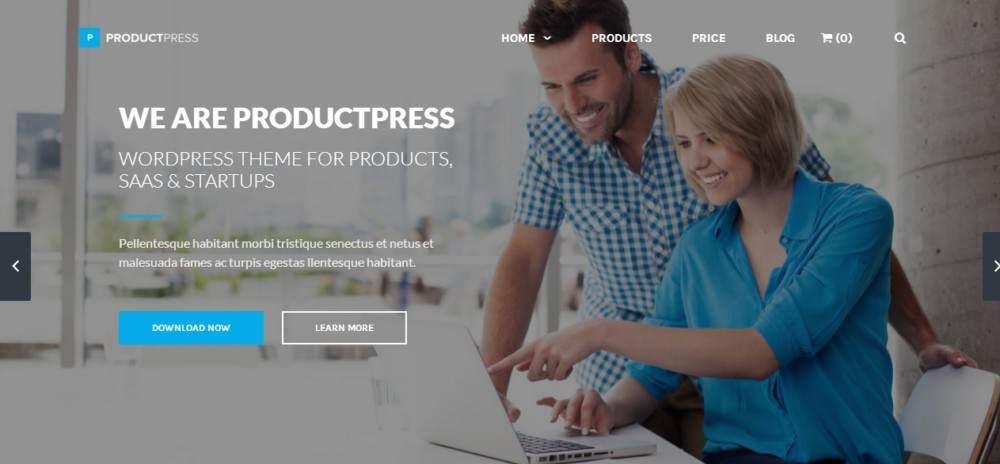 Easy Editable Marketplace WordPress Theme