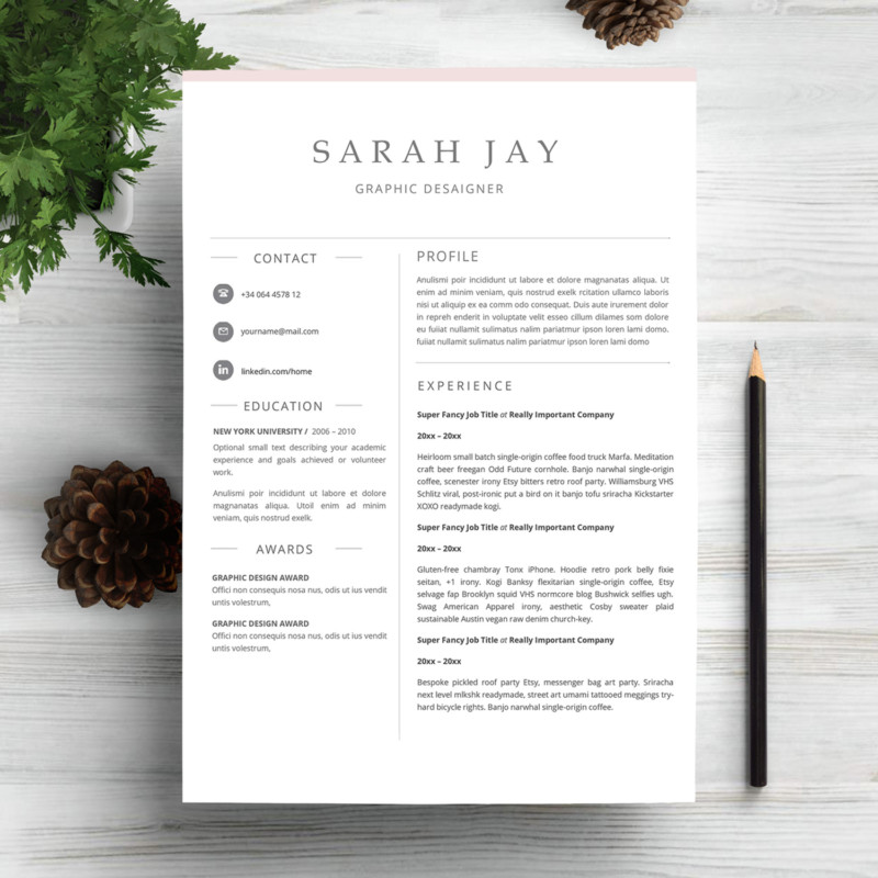 Print Ready Teacher Resume Template Word Psd Format  Graphic