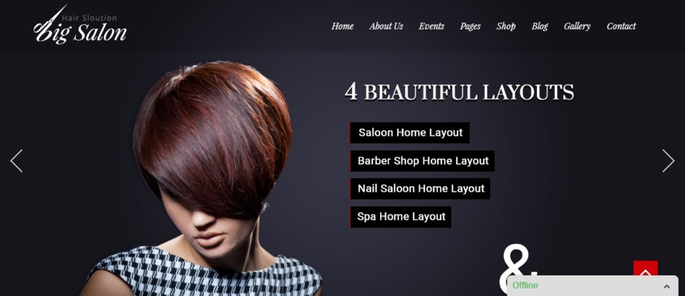 Elegant WordPress Spa and Salon Theme
