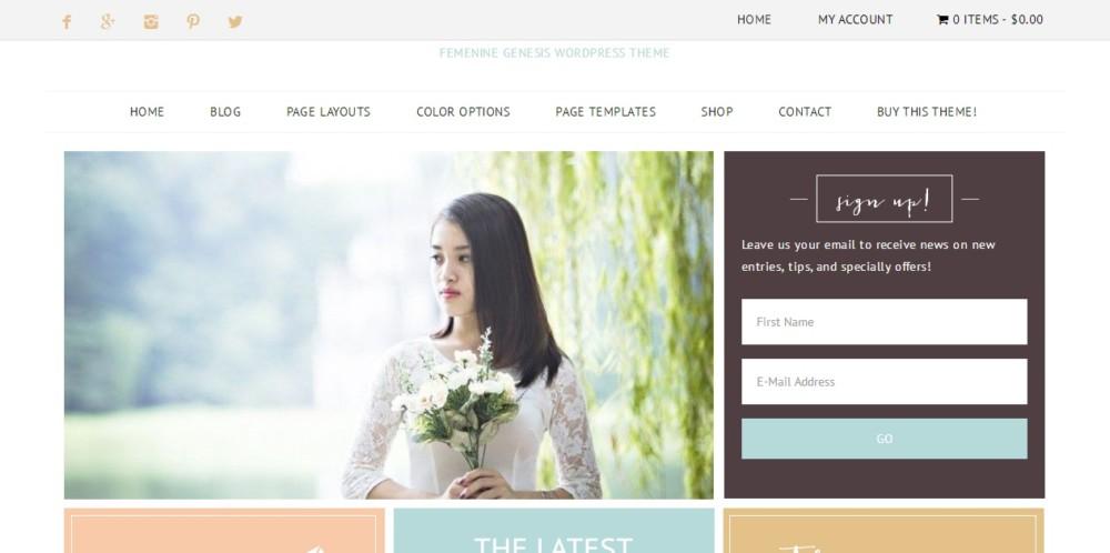 Feminine WordPress eCommece Theme