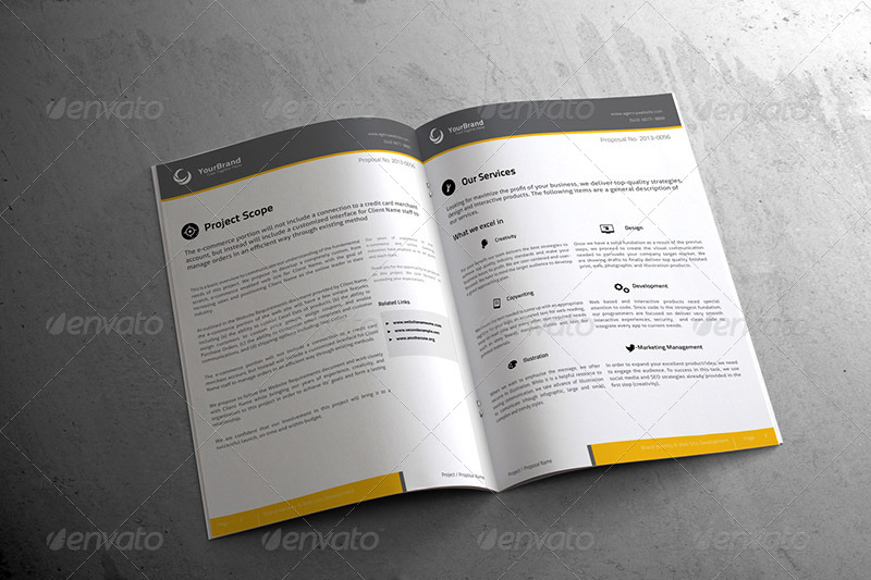 InDesign and Ai Software Development Proposal Template