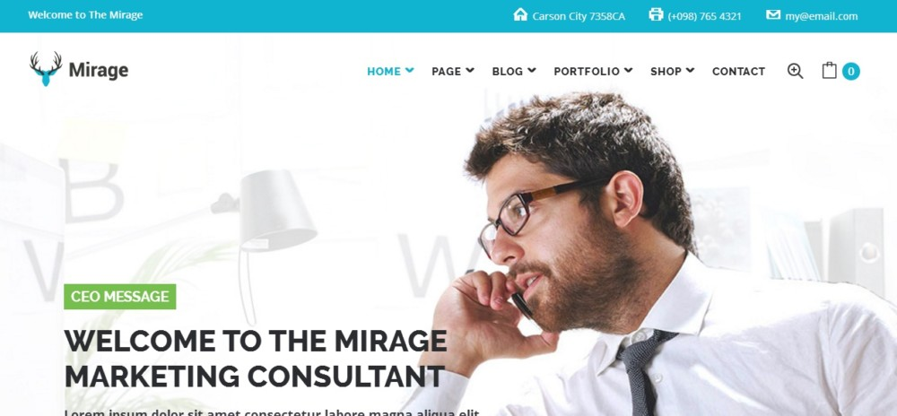 Marketing consultant WordPress Theme