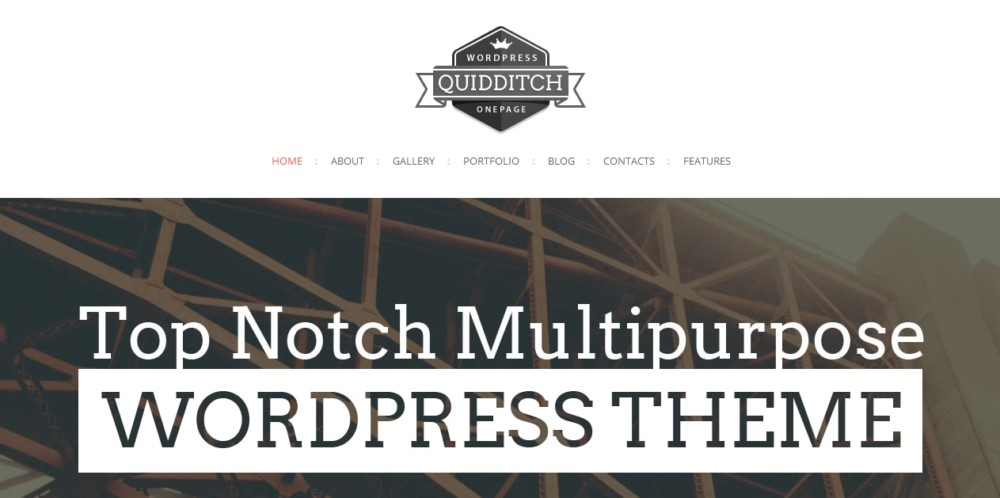 Multipurpose One Page WordPress Theme