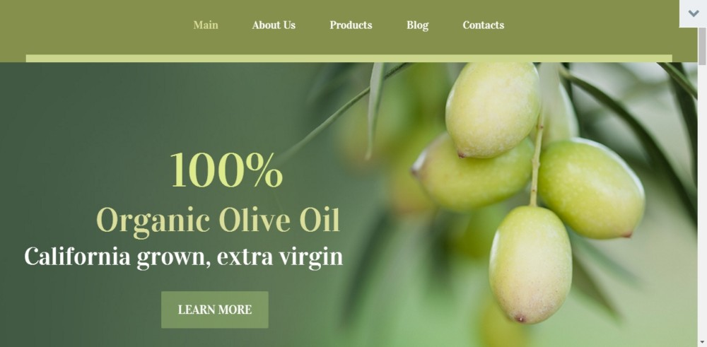 Organic products Marketing WordPress Theme
