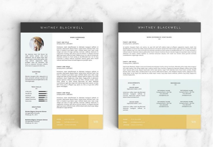 Two Page Resume Template PSD