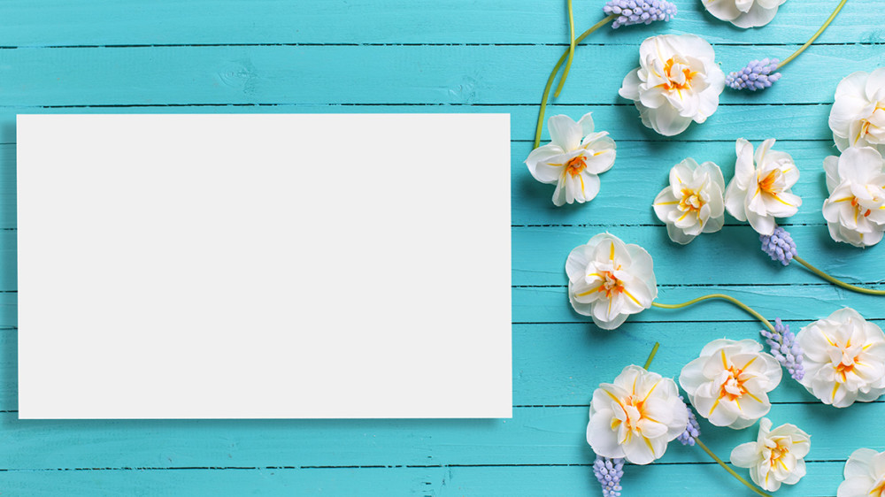 Postcard mock up template for design. Border from white narcissus and blue muscaries on green painted wooden background..