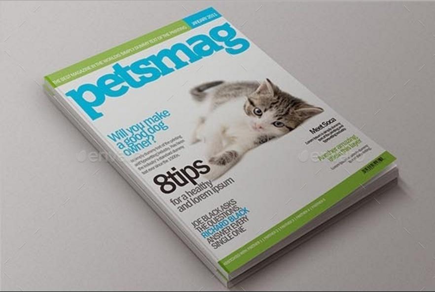 Customizabe Magazine Mockup PSD