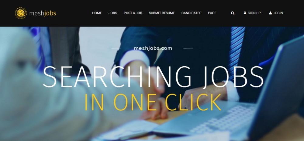 functional-wordpress-job-portal-theme