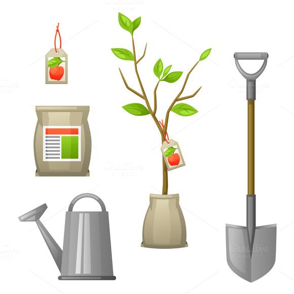 Fruit tree vectors