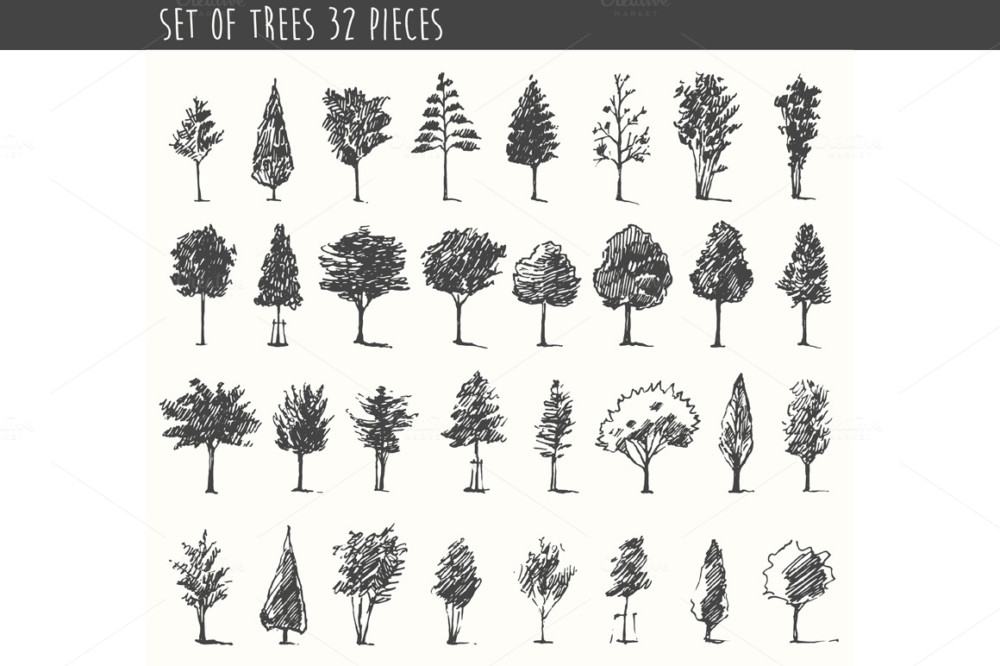 illustrations-of-trees
