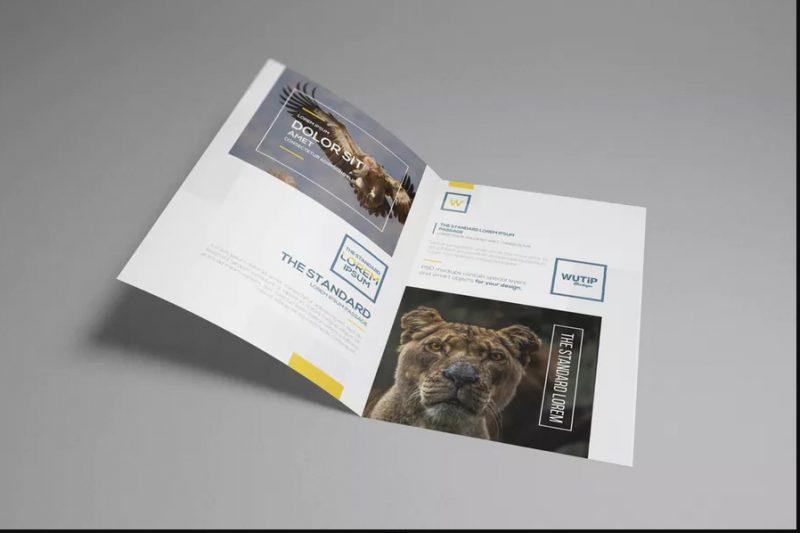 25+ A4 Brochure Mockup PSD