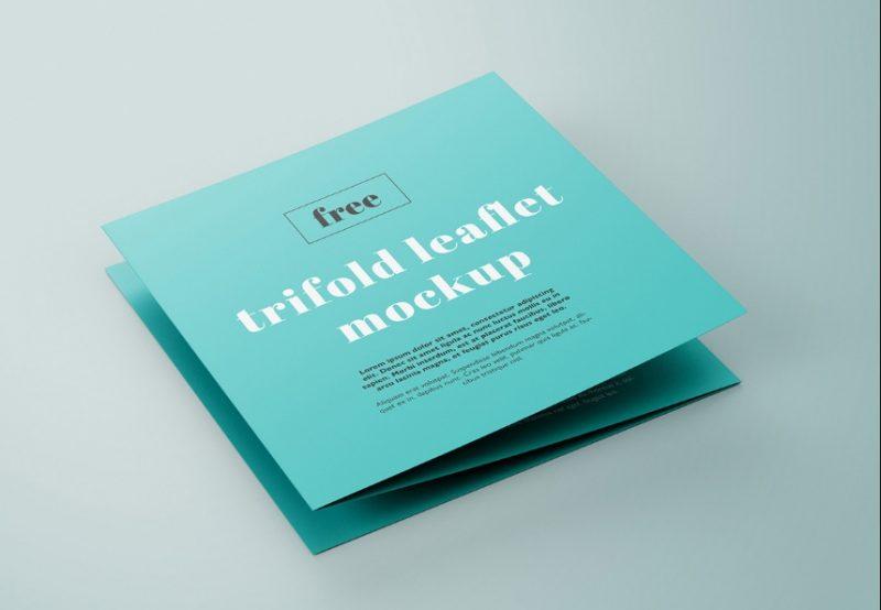 Professional Leaflet Mockup PSD Free
