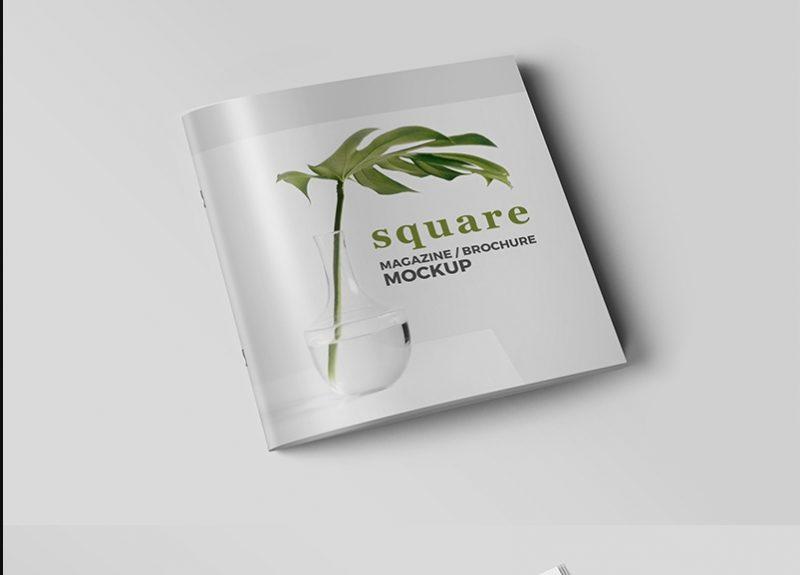 Professional Square Brochure Mockup