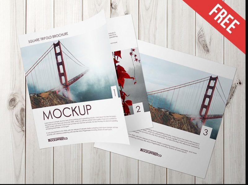 Square Tri Fold Brochure Catalog Mockup