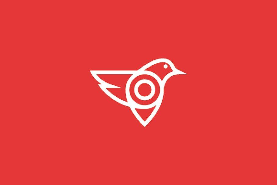Bird Logo Design for App