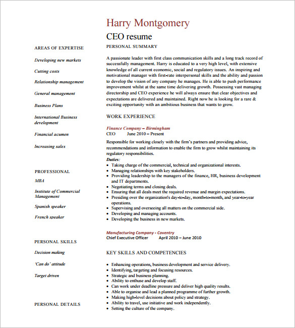 CEO Resume Example Download